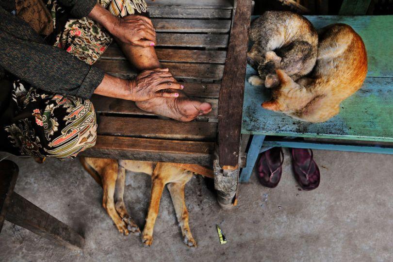 5dce5d25a7260 x 5dc9d53946b76  880 - 40 fotografias de Steve McCurry que exploram a relação entre humanos e animais