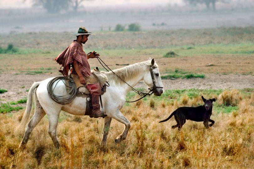 5dce5d2742ea2 x 5dc9d1d4b338e  880 - 40 fotografias de Steve McCurry que exploram a relação entre humanos e animais