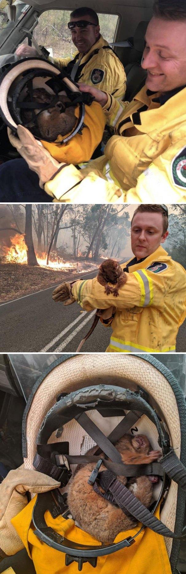 5e144300b1fa6 australia fires photos 29 5e13019aef27e  700 - Internet compatilha 50 fotos que revelam as queimadas na Austrália