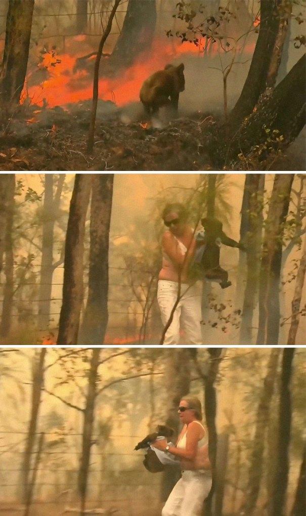 5e144301551e5 australia fires photos 27 5e12fbffd9ca8  700 - Internet compatilha 50 fotos que revelam as queimadas na Austrália