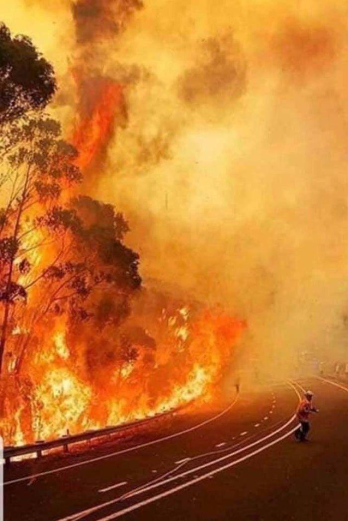 5e14430341947 5e12f3a7e4db6 294y3gv24y541  700 - Internet compatilha 50 fotos que revelam as queimadas na Austrália