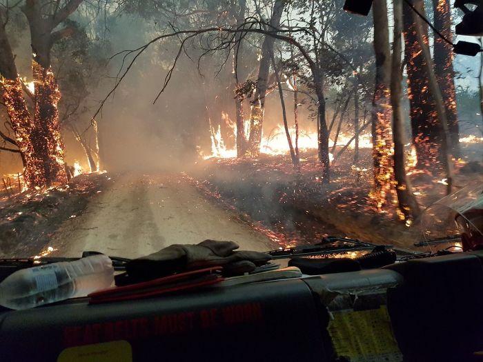 5e1443072b8f1 1213945781637570567 png  700 - Internet compatilha 50 fotos que revelam as queimadas na Austrália