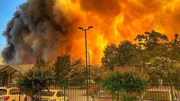 5e1443079708e australia fires photos 23 5e12eeb0a6375  700 - Internet compatilha 50 fotos que revelam as queimadas na Austrália