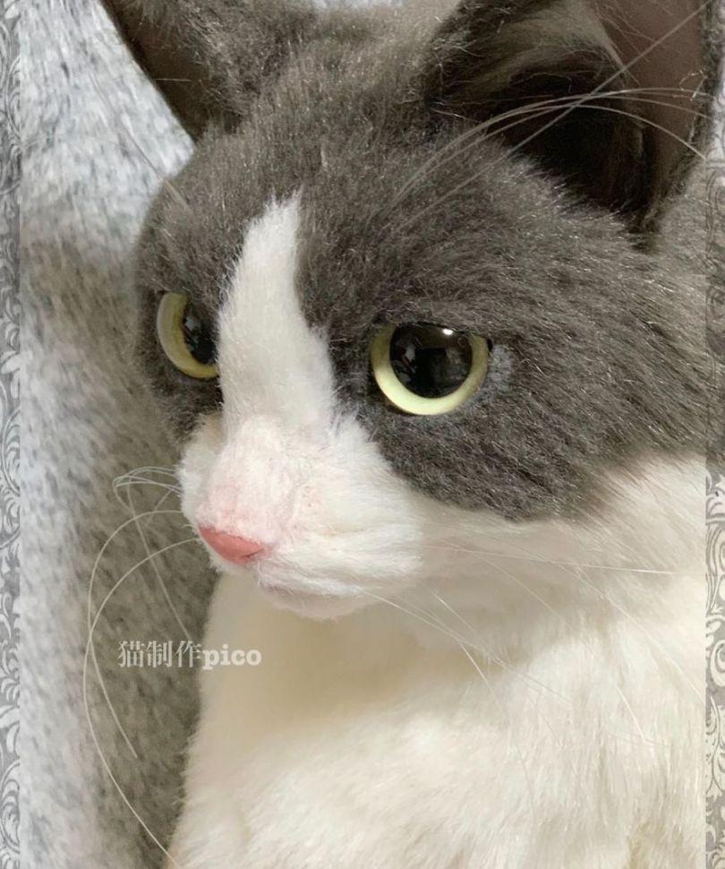 5e577eb7b4a71 Japanese artist continues to create bags in the shape of cats and realism impresses 5e54ce54c37ec  880 - Artista japonês cria Bolsas de gatos que assustam de tanta veracidade