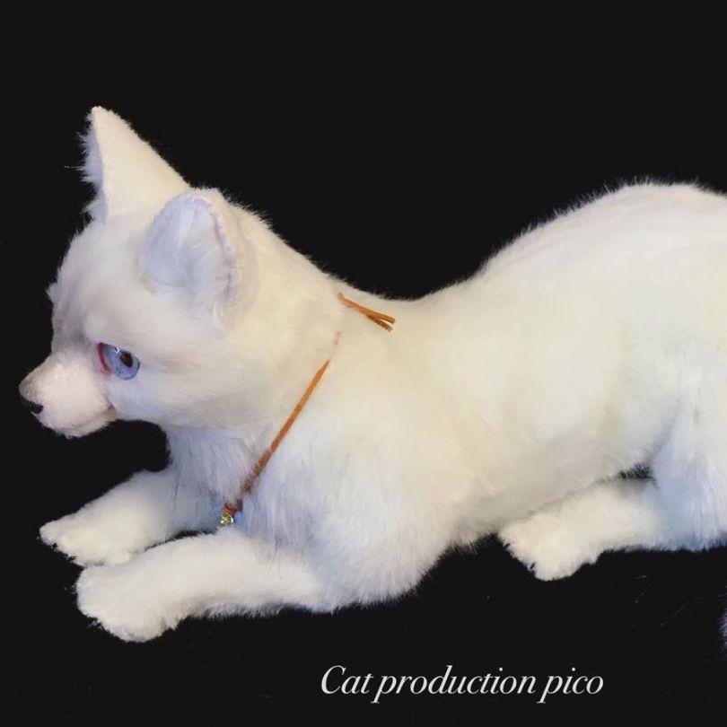 5e577eb8a0a05 Japanese artist continues to create bags in the shape of cats and realism impresses 5e54ce615c739  880 - Artista japonês cria Bolsas de gatos que assustam de tanta veracidade