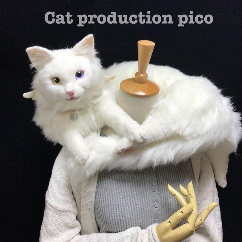 5e577ebdc4698 Japanese artist continues to create bags in the shape of cats and realism impresses 5e54cf0ae3464  880 - Artista japonês cria Bolsas de gatos que assustam de tanta veracidade