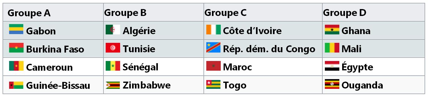 Coupe d'Afrique Des Nations Gabon 2017