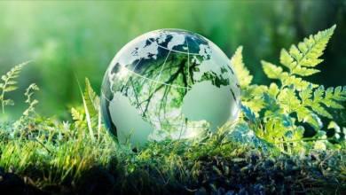 Photo of الحكامــة البـيئية و تحديات التنميــة المستدامــة : دراسة مقارنة بين الاقتصاد و القانون الدولي البيئي
