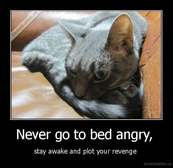 Never go to bed angry,  - stay awake and plot your revenge