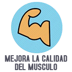 Mejora la calidad muscular