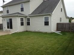 back yard 02