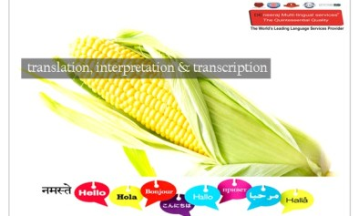 translation, interpretation & transcription services