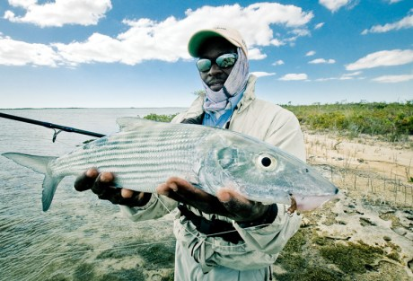 Now that's a cool bonefish picture.  Photo: Louis Cahill