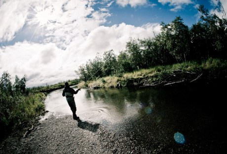 Fly Fishing Articles
