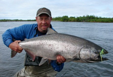 King Salmon - Catch More