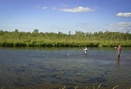 Favorite Fishing Tips