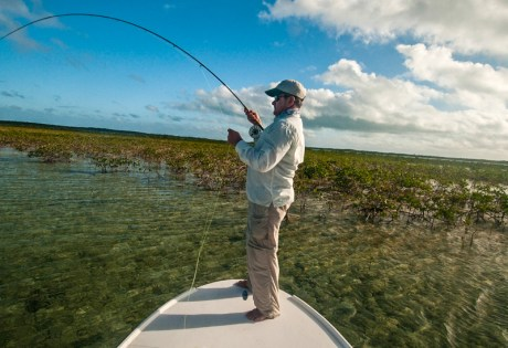 Hooked Up Bonefish by Louis Cahill