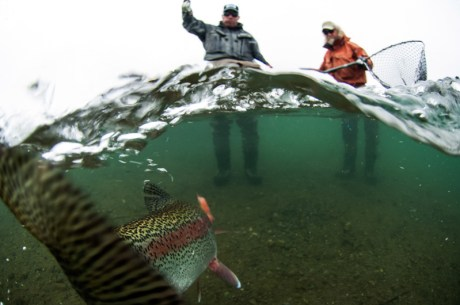 Trout Fishing in Alaska