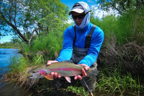 Fly fishing articles - rainbow trout