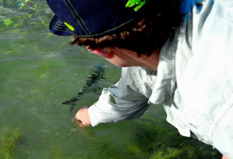 Early Season Bonefish Release