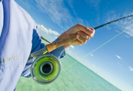 Spinning Reel by Louis Cahill Photography