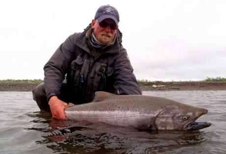 Chrome King Salmon from Western Alaska