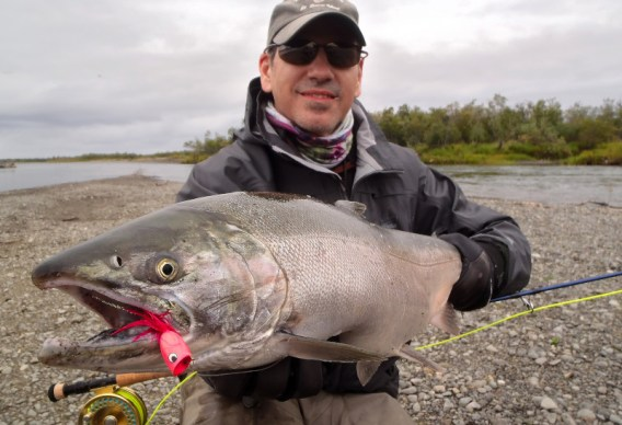 Popper Fishing for Silver Salmon at Alaska West