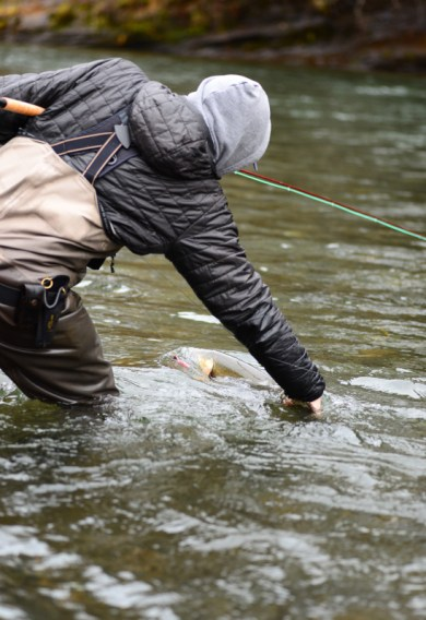 Landing Steelhead and Salmon Without a Net