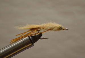 Veverka's mantis shrimp bonefish fly