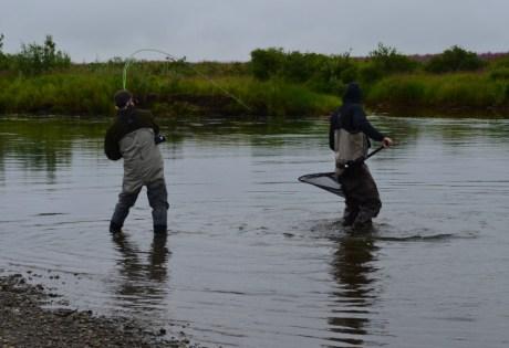 Landing fish