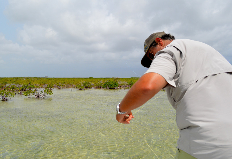 Line Management When Fly Fishing for Bonefish