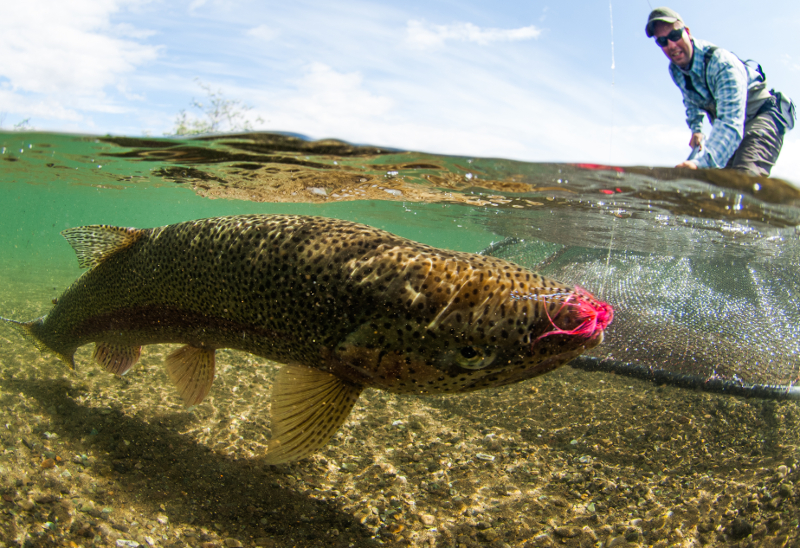 Fly fishing for trout in Alaska, photo by Tosh Brown