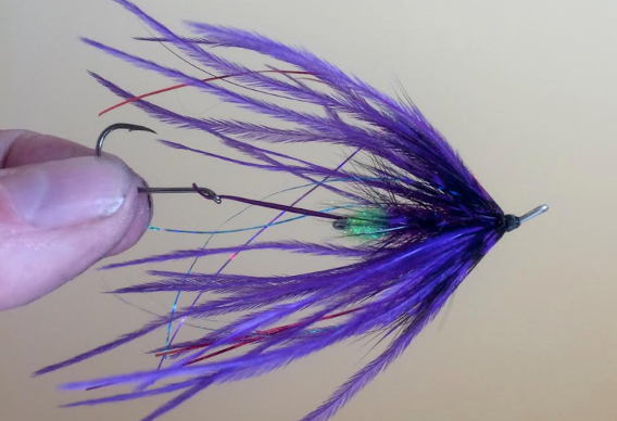 How to tie Jeff Hickman's Fish Taco Fly for Steelhead