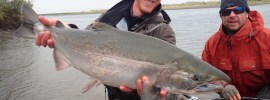 Alaska West guide, Jason Whiting, with a Silver Salmon.