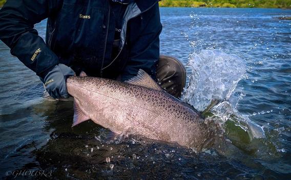 Fly fishing at Alaska West by Greg Houska.