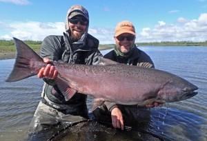 Huge king salmon caught at Alaska West.