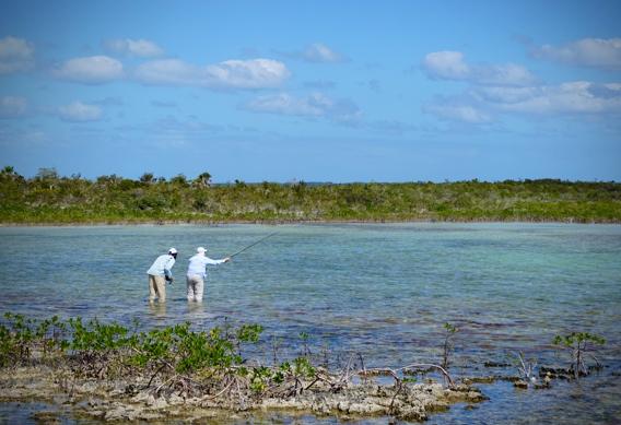 Wading for bonefish at Andros South.