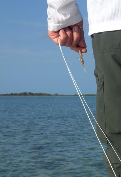 Selecting bonefish flies