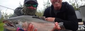 Silver salmon at Alaska West