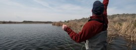 Fly fishing on lakes tips