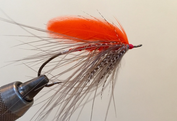 Tying colored heads on flies