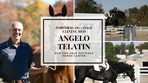 Clinic Med Angelo Telatin