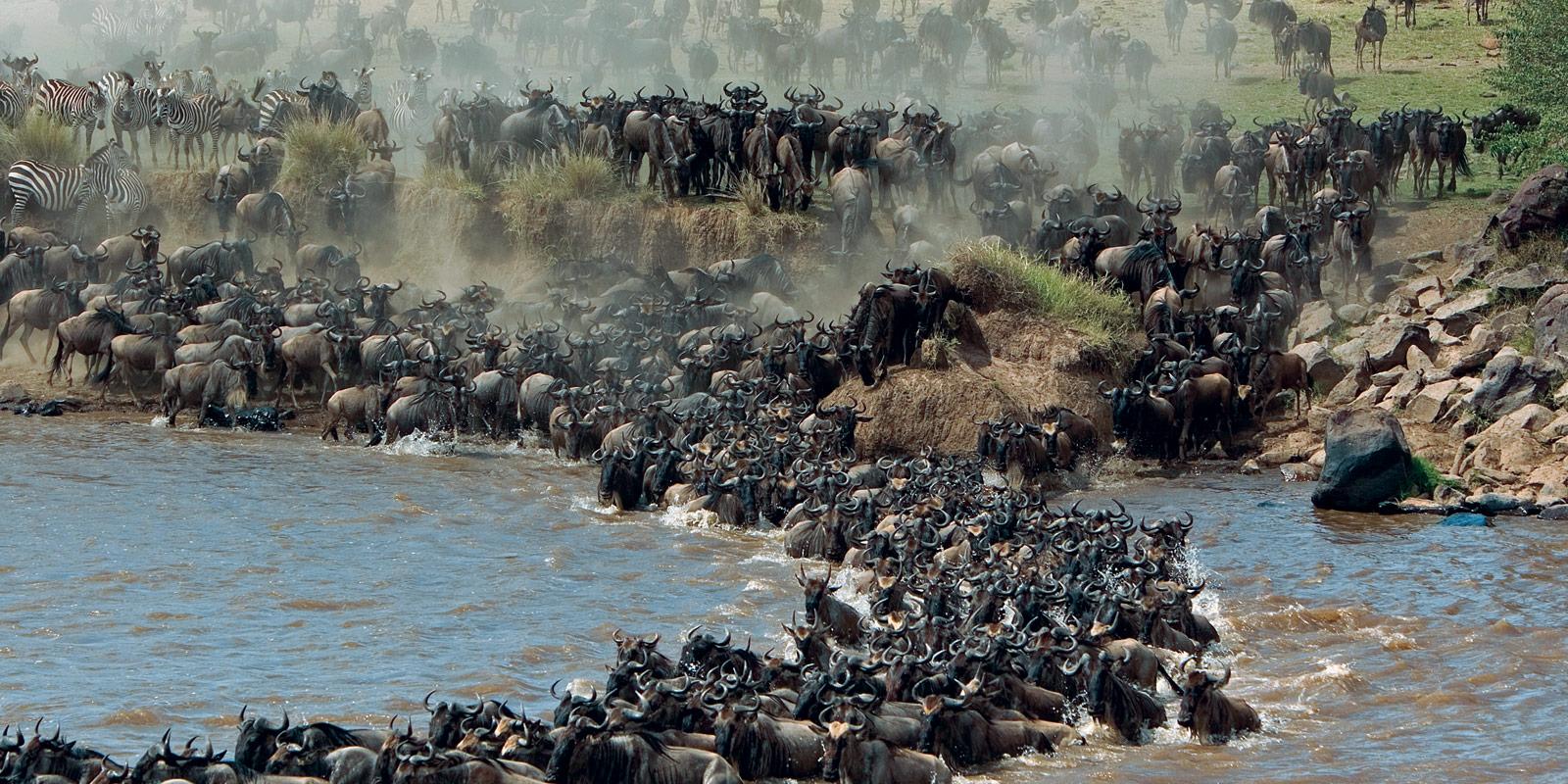 lake-nakuru-amboseli-safari
