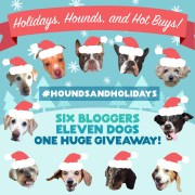 Holidays Hounds Hot Buys Main Photo