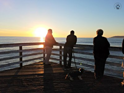 Snapshot Sundays February-Pismo sunset silhouette