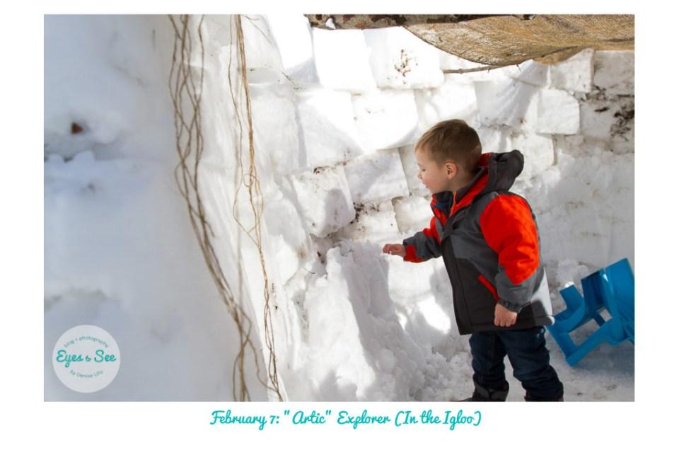 Feb 7 Artic Explorer