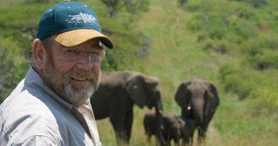 İnsan Dostlarının Vefatına Yas Tutan Filler