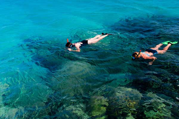 snorkelers over coral heads