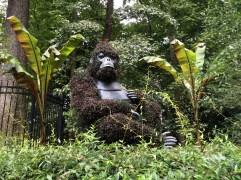 2014-08-31 Atlanta Botanical Garden-03