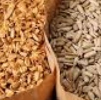 whole grains brain growth foods